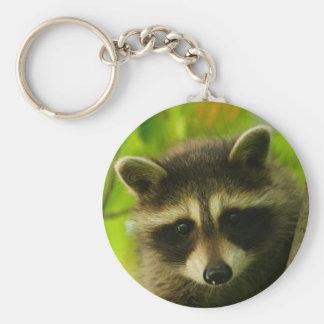 raccoon basic round button key ring