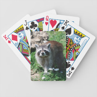 Raccoon Bicycle Playing Cards