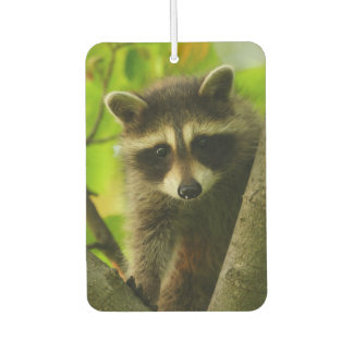 raccoon car air freshener