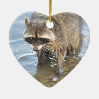 Raccoon Ceramic Heart Decoration