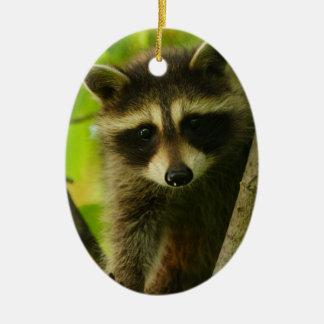 raccoon ceramic oval decoration
