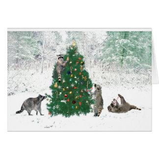 Raccoon Christmas Card