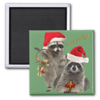 Raccoon Christmas gifts Magnet