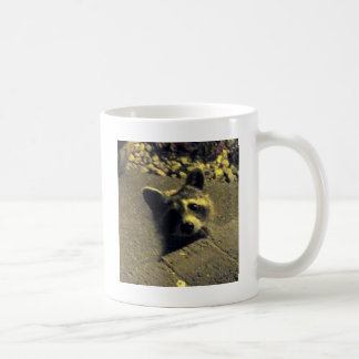 Raccoon ~ Face of an Angel Coffee Mug