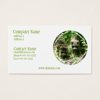 Raccoon Habitat Business Card