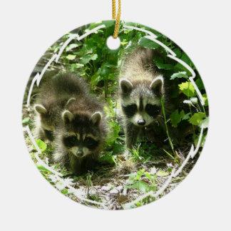 Raccoon Habitat Ornament