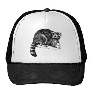 Raccoon Illustration Cap