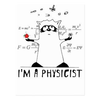 Raccoon: I'm a Physicist Postcard