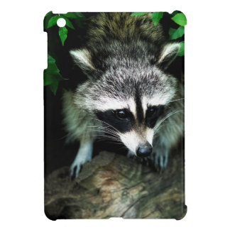 Raccoon In Forest Woods Nature iPad Mini Hard Case Case For The iPad Mini