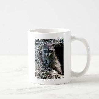 Raccoon in the Den Basic White Mug