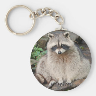 Raccoon Key Ring