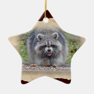 Raccoon - My bird seed! Ceramic Star Decoration