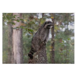 Raccoon on stump cutting board