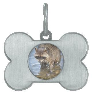 Raccoon Pet ID Tag