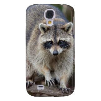Raccoon, Procyon lotor, Florida, USA 2 Galaxy S4 Case
