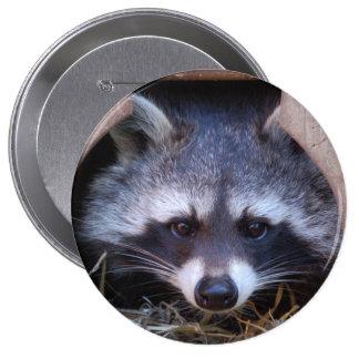 Raccoon Racoon 10 Cm Round Badge