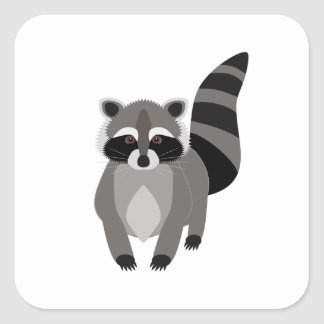 Raccoon Rascal Square Sticker