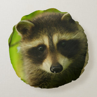 raccoon round cushion