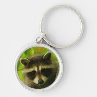raccoon Silver-Colored round key ring