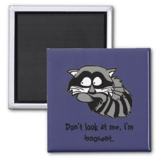 Raccoon Square Magnet