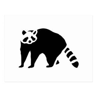 Raccoon Vintage Wood Engraving Postcard