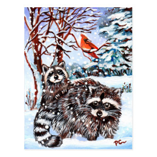Raccoons in the Snow Postcard