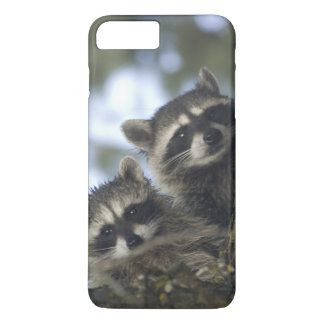 Raccoons Procyon Lotor) of Fish Lake, Central iPhone 8 Plus/7 Plus Case