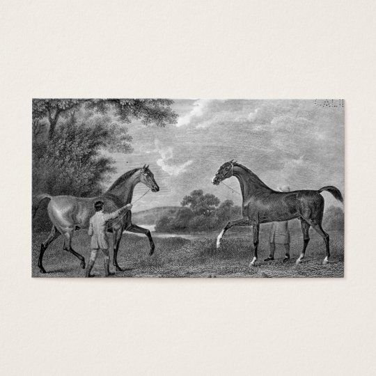 Race Horses Black and White Business Card