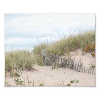 Race Point sand dune in autumn Photographic Print
