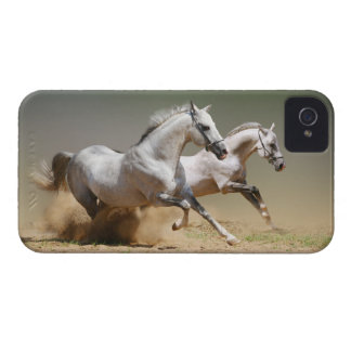 Race The Wind Horses iPhone 4 Case