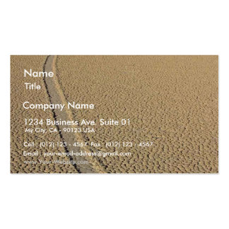 Racetrack Playa Pack Of Standard Business Cards