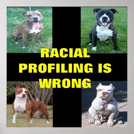 Racial Profiling Poster