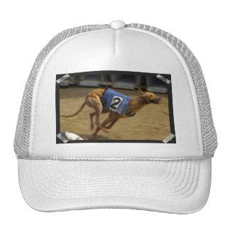 Racing Greyhound Baseball Hat