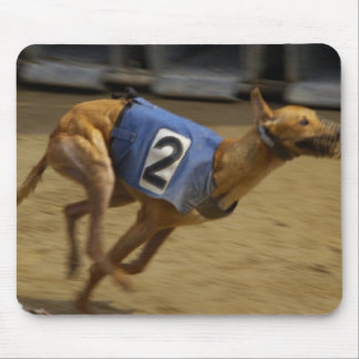 Racing Greyhound Mouse Pad
