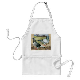 Racing Homers in Loft Standard Apron