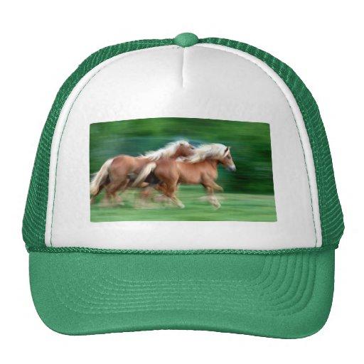 Racing Palomino Horses Baseball Hat