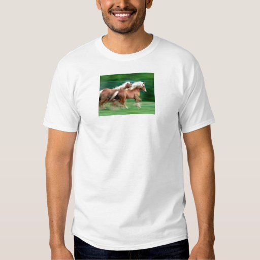 Racing Palomino Horses Green Men's T-Shirt