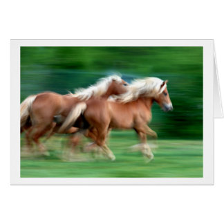 Racing Palomino Horses Greeting Card