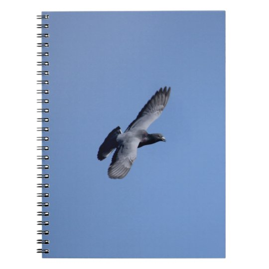 Racing Pigeon in Flight Notebook