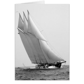 Racing Yacht Atlantic, 1904 Card