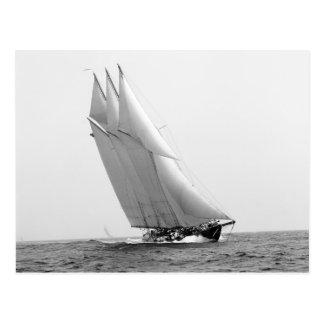 Racing Yacht Atlantic, 1904 Postcard