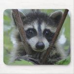 Racoon - #1005 mouse mat