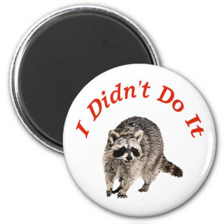 Racoon 6 Cm Round Magnet