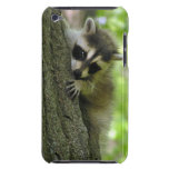 Racoon Baby iPod Case-Mate Case