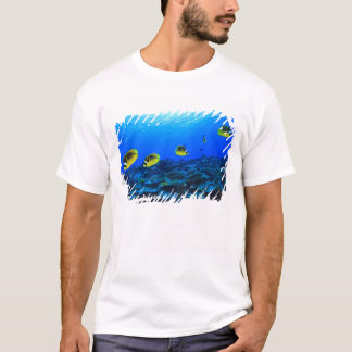 Racoon Butterflyfish Chaetodon lunula), North T-Shirt