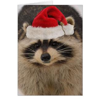 Racoon Christmas card