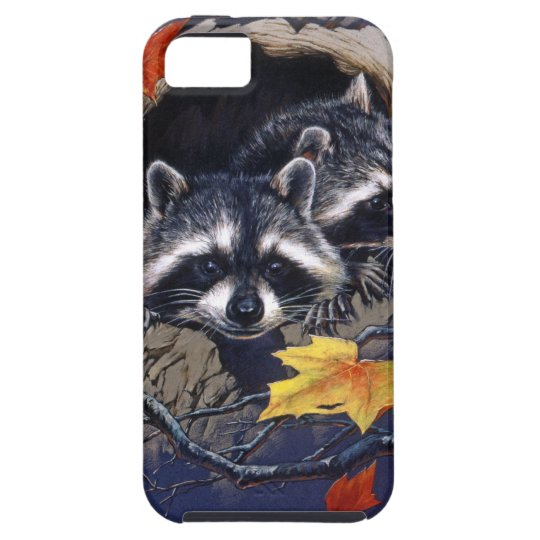 Racoon Hideaway iPhone 5 Covers