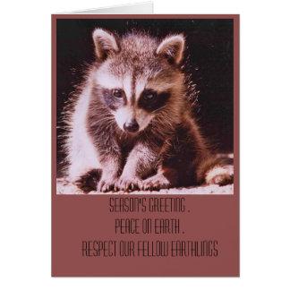 Racoon Kit Christmas Greetings Card