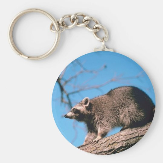 Racoon Perched Basic Round Button Key Ring