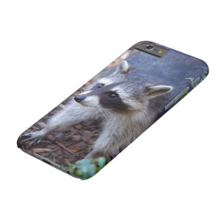 RACOON ~ RACCOON by Jean Louis Glineur Barely There iPhone 6 Case